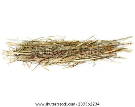 pile hay for guinea pigs isolated on white background - stock photo