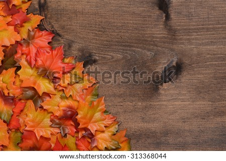 pile maple leaves in corner - stock photo