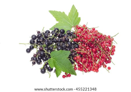 Pile of a fresh blackcurrant and redcurrant with leaves on a light background