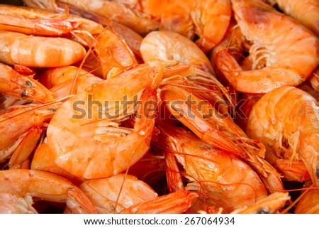pile of big king red cooked  prawns close up  - stock photo
