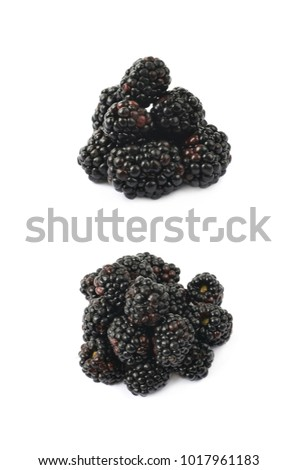 Pile of blackberry fruits isolated over the white background , set of several different images
