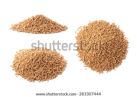 Pile of brown mustard seeds isolated over the white background, set of three different foreshortenings - stock photo