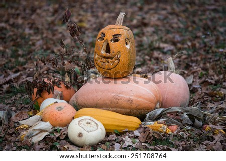 pile of carved pumpkins on grass - stock photo