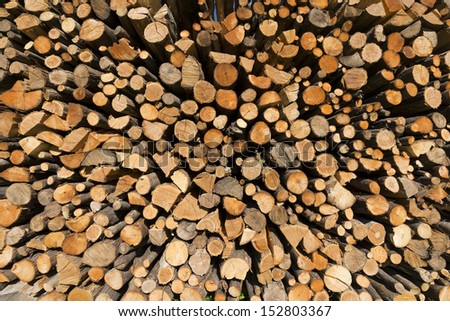 Pile of Chopped Firewood / Background of dry chopped firewood logs in a pile