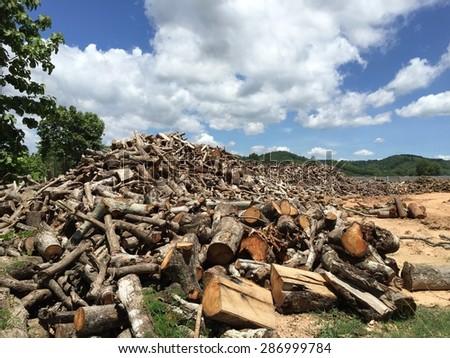 Pile of Chopped Firewood on Blue Sky - stock photo