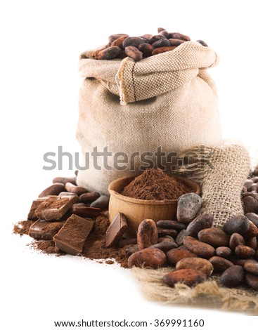 Pile of cocoa beans and chocolate isolated on white background - stock photo