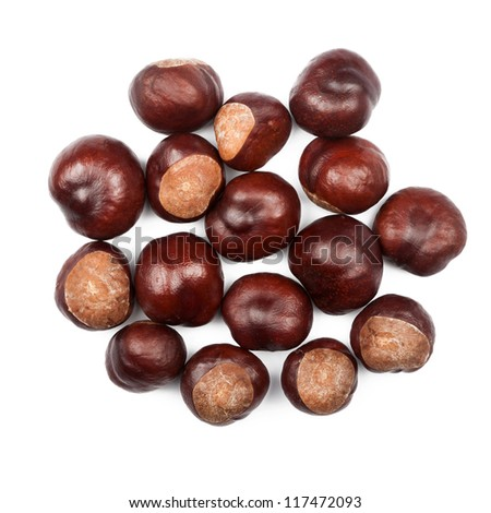 Pile of conkers isolated on white background