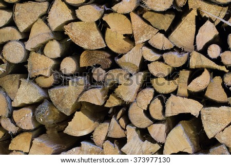 Pile of Cut Trees - stock photo