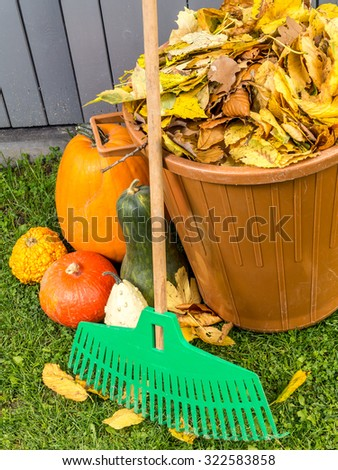 Pile of dead fall leaves dumped into plastic bin, pumpkins and fan rake resting against wooden shed - stock photo