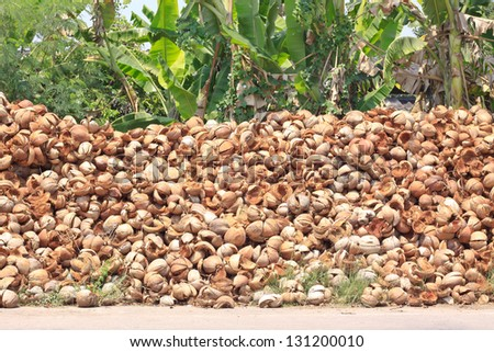Pile of discarded coconut husk in coconut farm