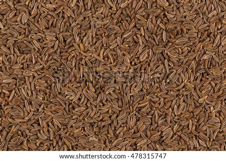 Pile of dry caraway seeds  as a background