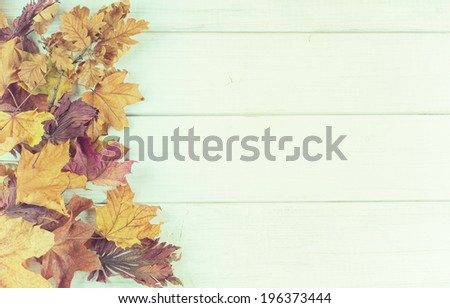 Pile of Fall Leaves on side of Rustic White Painted Board background with room or space for copy, text.    Horizontal or rotate for vertical, vintage faded instagram - stock photo