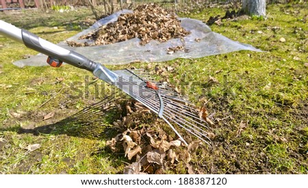 Pile of fall leaves with fan rake on lawn, garden accessories  - stock photo