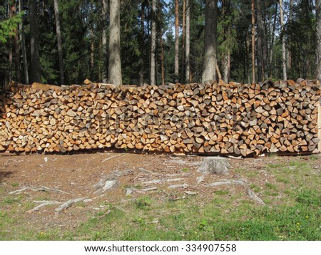 Pile of firewood with forest background . Fie allo sciliar, South Tyrol, Italy