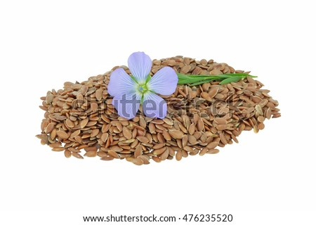 Pile of Flax seeds with single flax flower isolated on white background.