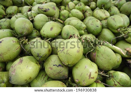 Pile of fresh green Brazilian coconuts sit outdoors in natural tropical light - stock photo