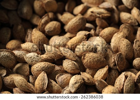 pile of fresh kernel almonds  - stock photo