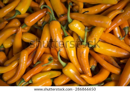Pile of fresh red chili peppers on display in a pile at an outdoor fruit and vegetable market in Bangkok, Thailand - stock photo