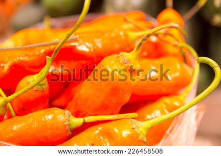 pile of fresh red chillies at the market closeup - stock photo