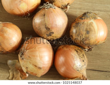 pile of Fresh ripe onions on wooden background