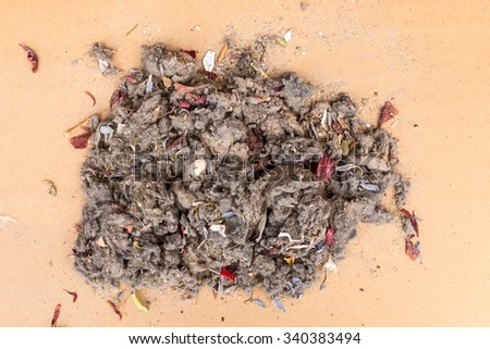 pile of garbage dust from the vacuum cleaner - stock photo