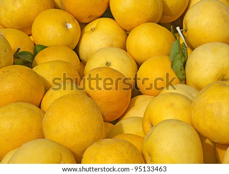 Pile of grapefruits