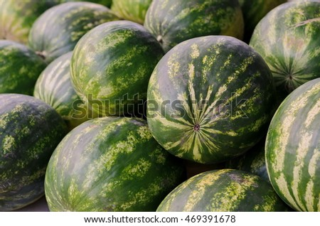 Pile of green ripe striped watermelons on a market