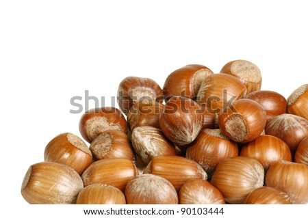 pile of hazel nuts in shells on a white background
