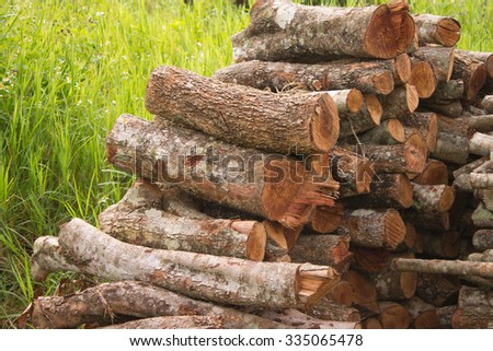 Pile of logs before firewood in winter - stock photo