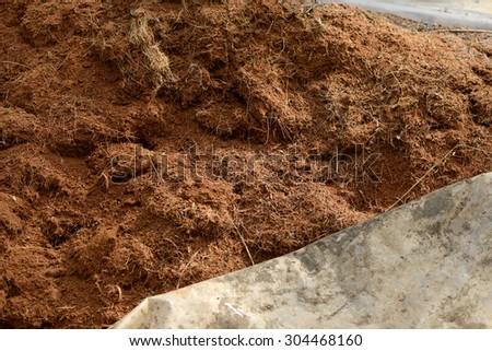 Pile of manure at farm - stock photo
