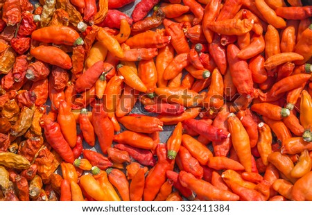 Pile of many Red chili peppers background.The chili pepper is the fruit of plants from the genus Capsicum, members of the nightshade family, Solanaceae. - stock photo