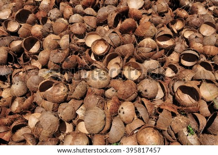 Pile of open and empty coconut shells