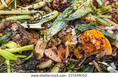 Pile of organic waste background - stock photo