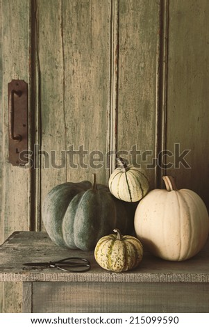 Pile of pumpkins and gourds on old bench - stock photo