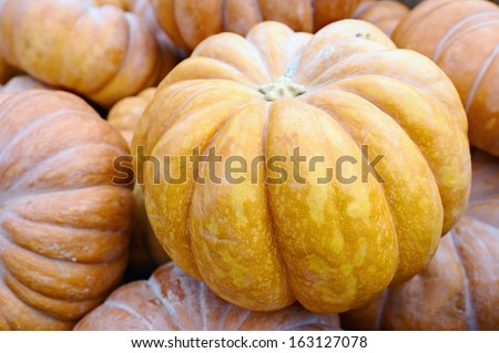 Pile of pumpkins. Can be used as background. - stock photo