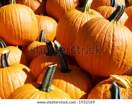 Pile of pumpkins on sale for Halloween. - stock photo