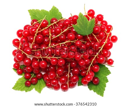 Pile of ripe redcurrant berries on green leaves isolated - stock photo