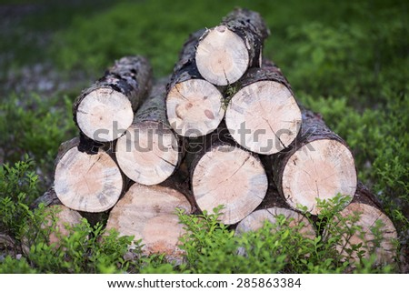 Pile of round wods on green base - stock photo