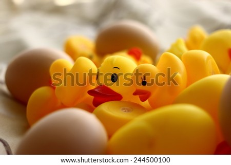 Pile of rubber ducks and plastic eggs