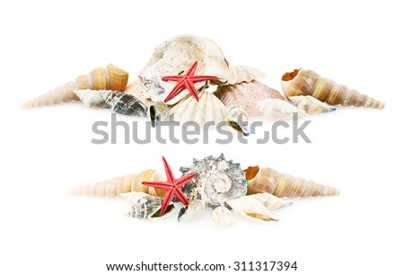 Pile of seashells isolated over the white background, set of two foreshortenings - stock photo