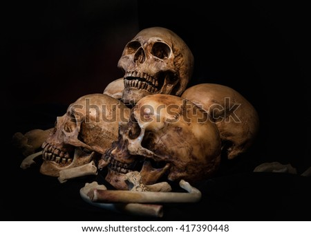 Pile of skulls and animal bones on black fabric background. Genocides concept still life style. - stock photo