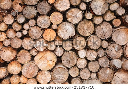 Pile of spruce wood - stock photo