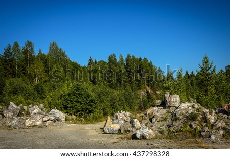 pile of stones in front of forest - stock photo