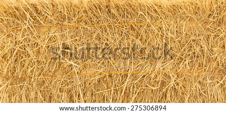 pile of straw background - stock photo