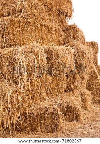 Pile of straw by product from rice field after collecting season  in rural of Thailand. - stock photo