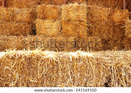 how to gey sheep to eat wheat straw