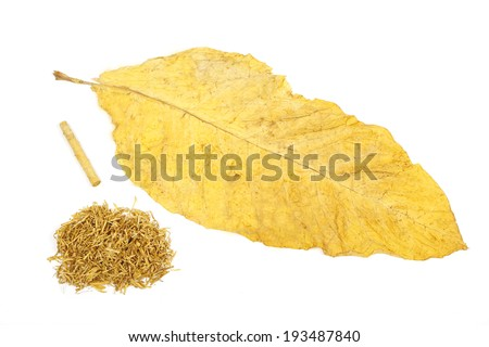 pile of tobacco and hand-rolled cigarettes  - stock photo