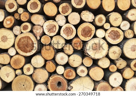 Pile of tree stumps, woods structure - stock photo