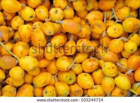 Pile of Tunisian marula fruit - stock photo