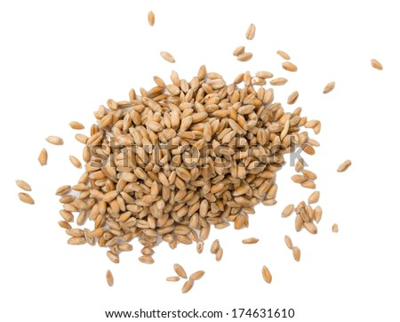 Pile of wheat seeds isolated on white - stock photo